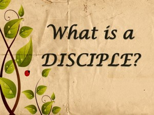 Simple definition of disicple, what is a disciple