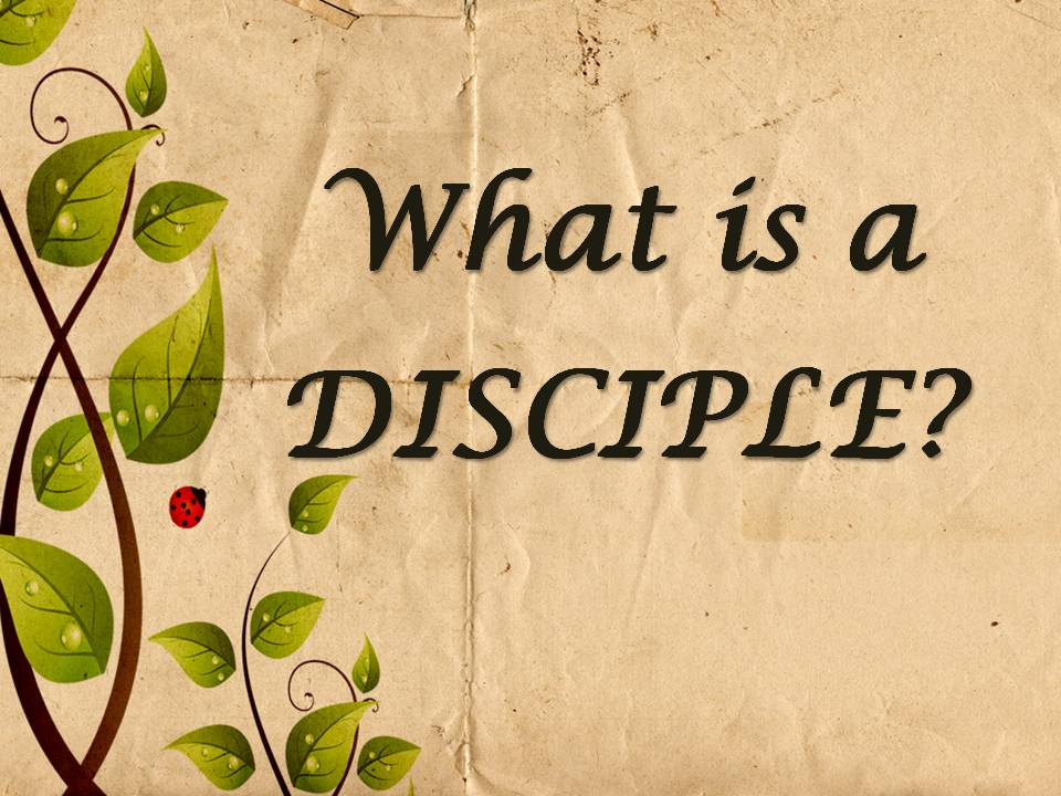 Simple Definition Of Disciple